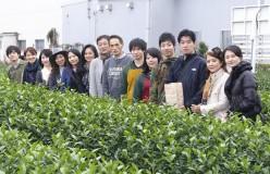 [終了]第3回 日本茶アンバサダー公募 認定講座の募集開始!5月末〆切り(限定10名)