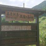 清水加奈『かぶせ茶農家のひとりごと』vol.24『マルシゲ研修旅行』