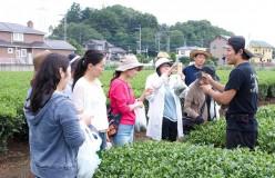 第1回日本茶アンバサダー公募認定講座開催のご報告