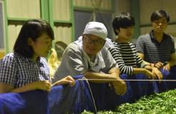 元祖国産燻製茶カネロク松本園3代目奮闘記 vol.22 6月は茶畑にひきこもり