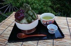 清水加奈『かぶせ茶農家のひとりごと』vol.34『今年もやってます!かぶせ茶氷。』