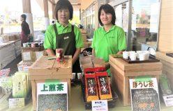 岐阜のお茶旅 vol.28_伝統から進化へ 洗練された新世代の白川茶 新田製茶