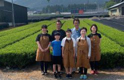 清水加奈『かぶせ茶農家のひとりごと』vol.42 『いろいろありました、今年の新茶&二番茶』